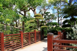 Walk through Shinden Garden